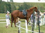 Alyssa after pony ride